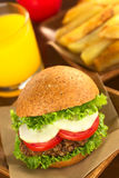 Vegetarian Lentil Burger Royalty Free Stock Images