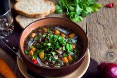 Vegetarian lentil soup (stew) Royalty Free Stock Photos