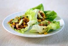 Vegetarian lettuce wraps Stock Image