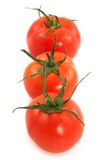 Vegetarian line-three tomatoes Royalty Free Stock Photos