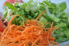A vegetarian lunch. Grated carrots with green salad Royalty Free Stock Photography