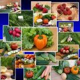 The vegetarian menu Stock Image