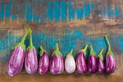 Vegetarian menu template - small fresh eggplants on wooden table Stock Photography