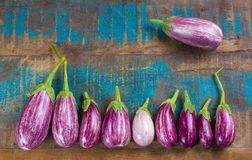 Vegetarian menu template - small fresh eggplants on wooden table Royalty Free Stock Photo