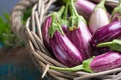 Vegetarian menu template - small fresh eggplants on wooden table Royalty Free Stock Photos