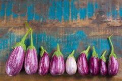 Vegetarian menu template - small fresh eggplants on wooden table Stock Image