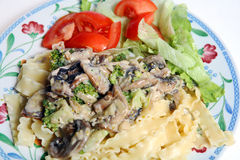Vegetarian mushroom cream pasta sauce salad Royalty Free Stock Image