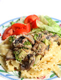 Vegetarian mushroom cream sauce pasta salad meal Royalty Free Stock Photos