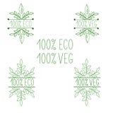 Vegetarian- och strikt vegetarianmeny Eco 100% bio produkter vektor illustrationer