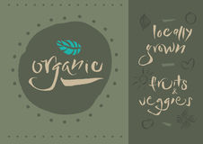 Vegetarian - Organic - Calligraphy royalty free stock photography