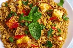 Vegetarian paneer biryani at light blue background. Paneer biryani is traditional veg indian cuisine dish with paneer cheese, basmati rice, masala, chili stock image