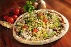 Free Vegetarian Pizza Stock Image - 8765901