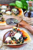 Vegetarian pizza with dried tomatoes, spinach, onion and cheese.  selective focus. Royalty Free Stock Photography