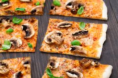 Vegetarian pizza with mushrooms Royalty Free Stock Image