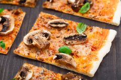 Vegetarian pizza with mushrooms Stock Image