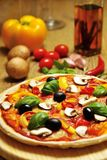 Vegetarian pizza with some ingredients. Vegetarian pizza on wooden board with some ingredients stock image