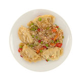 Vegetarian potstickers meal on a plate. Top view of a microwaved vegetarian potstickers meal on a plate isolated on a white background Stock Image