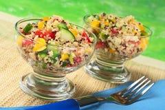 Vegetarian Quinoa Salad Stock Photography