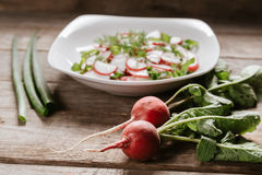 Vegetarian radish salad Stock Photography