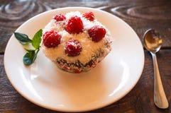 Vegetarian raspberry cake Royalty Free Stock Images