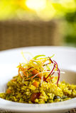 Vegetarian rice royalty free stock photo