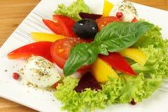 Vegetarian salad Stock Images