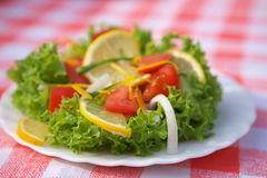 Vegetarian salad Royalty Free Stock Images