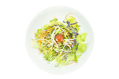 Vegetarian salad. On white plate, top view royalty free stock images