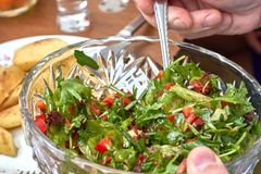 Vegetarian salad of arugula, herbs and tomatoes in a salad bowl in the hands royalty free stock image