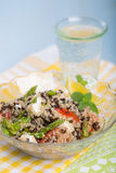 Vegetarian salad with asparagus, lentils, quinoa. And tofu royalty free stock image