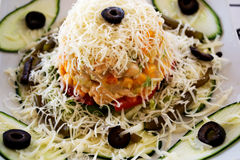 Vegetarian salad. Delicious vegetable salad with cheese stock image