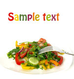 Vegetarian salad and a fork isolated. Freshness vegetarian salad and a fork isolated Stock Photography