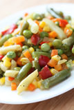 Vegetarian salad. Fresh vegetarian salad. Close-up Royalty Free Stock Image