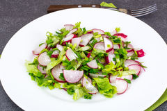 Vegetarian salad with fresh radish, arugula, spinach. Studio Photo Royalty Free Stock Images