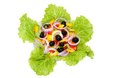 Vegetarian salad with fresh vegetables Royalty Free Stock Photos