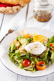 Vegetarian Salad with Poached Egg Stock Photography