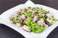 Vegetarian salad with radish and green onions. Studio Photo Stock Images