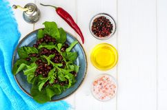 Vegetarian salad of red beans and arugula stock image