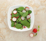 Vegetarian salad of spinach, radishes and pomegranate royalty free stock photo