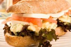 Free Vegetarian Sandwich Royalty Free Stock Photos - 14561678