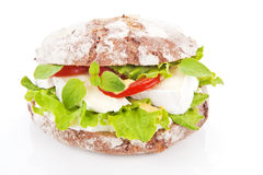Vegetarian sandwich. Royalty Free Stock Photo