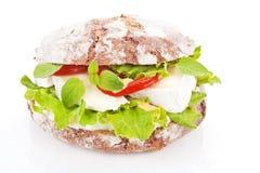 Free Vegetarian Sandwich. Royalty Free Stock Photo - 19807045