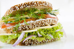 Vegetarian sandwich Stock Image