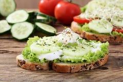 Free Vegetarian Sandwich Royalty Free Stock Photography - 71439467