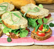 Vegetarian sandwich and ham sandwich Royalty Free Stock Images