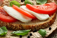 Vegetarian sandwich. Healthy sandwich with mozzarella cheese and tomatoes Royalty Free Stock Images