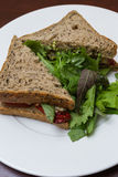 Vegetarian sandwich served with a side salad Royalty Free Stock Photos