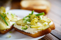 Free Vegetarian Sandwich With Cheese, Pickles And Herbs Royalty Free Stock Image - 66454526