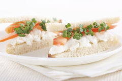 Vegetarian sandwiches Royalty Free Stock Image