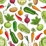 Vegetarian seamless pattern with vegetables Stock Image